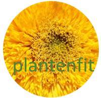 PlantenFit